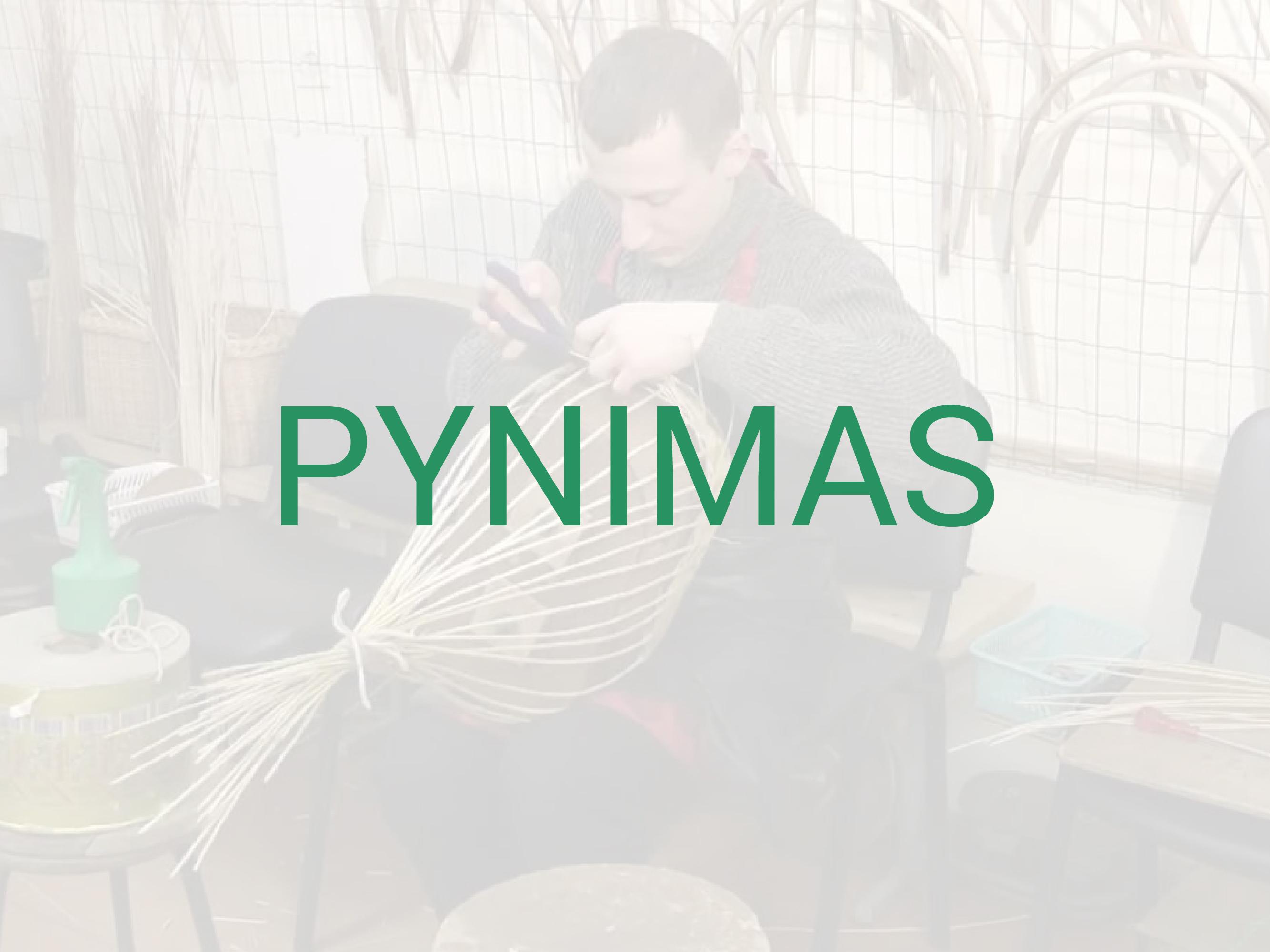 PYNIMAS-01